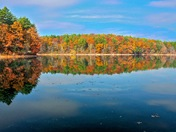 Fall at Walden Pond