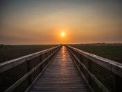 Sunrise Paynes Prairie