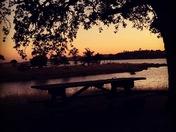 Millerton Lake California