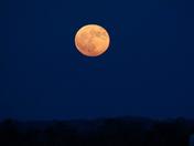 Harvest Moon Rise!