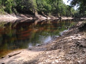 Suwanee River in Live Oak Florida