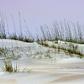 Dunes of Anastasia