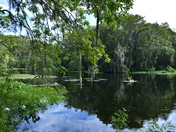 Reflections at Silver Springs