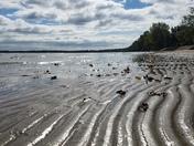 East Harbor Fall Tides