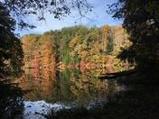Rose Lake Reflection