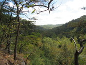 Conkle's Hollow - Rim Trail 3