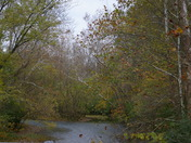 View of Caesar Creek from Little Miami Scenic Trail (West)