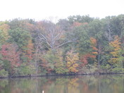 Fall colors (lake, trees, sky)