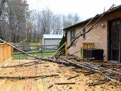 Tree Damaged New Deck