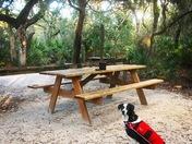 Puppy's Paradise Picnic