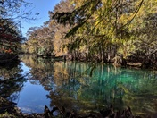 Manatee Springs in Winter