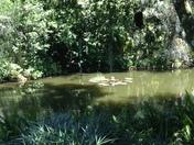 Enjoying nature the