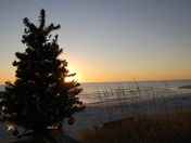 Christmas on Honeymoon Island