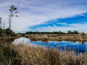 Blue Sky over Big Talbot Island