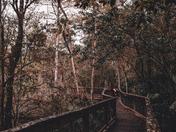 Hike in Hillsborough