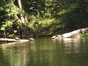 Kayaking the Springs