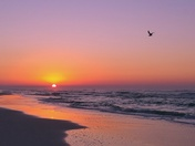 The promise of a new day, Topsail Hill Preserve
