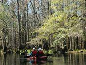 Kayaking a Spring Run