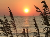 Sunset and sea oats
