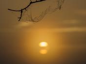 Kissimmee Prairie Preserve Sunrise