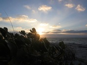 Sunset over Cayo Costa