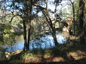 Way down upon the Suwannee River