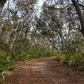 Relaxing Hike