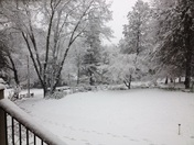 February snow in Grass Valley