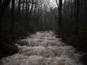 River Raging