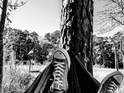 Camping with Chucks...