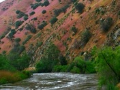 Spring colors of the canyon