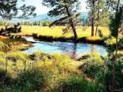 Yellowston Nat.Park