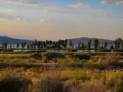 Wetlands beginging sunset