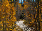 Autumn Marlette Trail