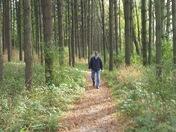 Hiking in Kohler-Andrae State Park