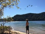 Cave Run Lake, Ky
