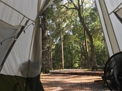 View from the teepee