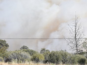 Early stages of the Lane Fire on Highway 36 in Tehama County