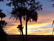 Sunset Myakka River State Park