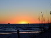 Sunset Stunner