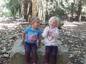 Twins enjoying the Redwoods.