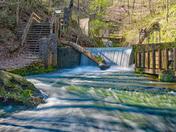 Lower Falles of Mill Creek