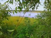 Weekend Trip to Myakka State Park
