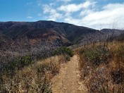 Scenic Trail at Point Mugu State Park