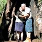 Under The Old Oak Tree