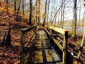 Ogle Lake trail in the Fall