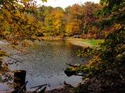 Fall Foliage Around Ogle Lake