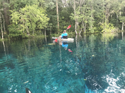 Blue Beauty of Silver Springs