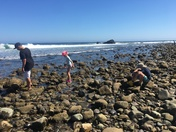 Low Tide at Leo Carrillo