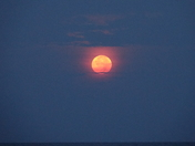 Blood Moon Sunrise Over the Gulf in Deer Lake State Park